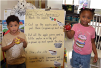 Apple Activities Teach Appetizing Lessons photo 2