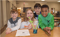 Celery Experiment Gets Colorful photo